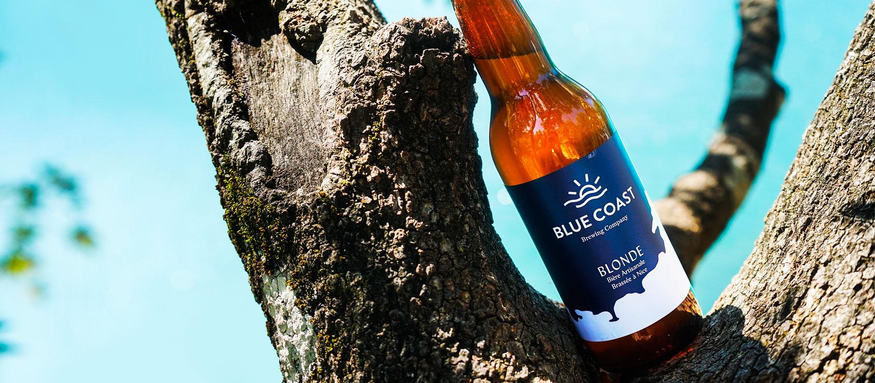 Case study Blue Coast par tequilarapido